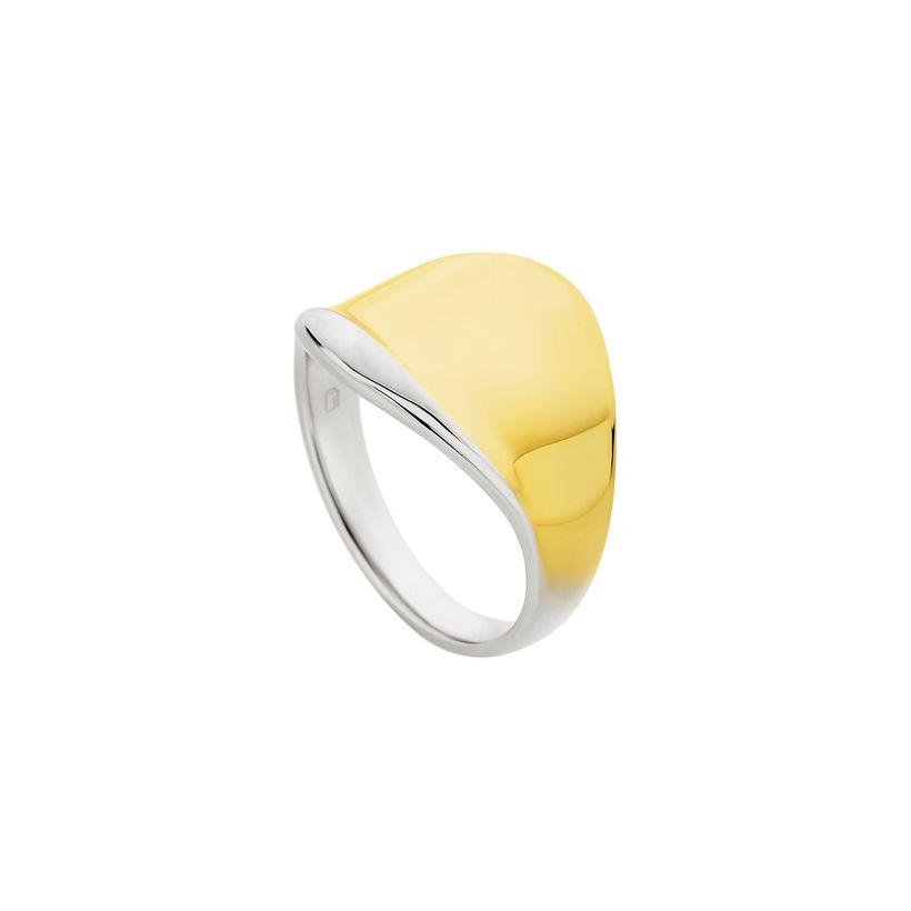 Δαχτυλίδι Reflections δίχρωμο από επιχρυσωμένο και επιροδιωμένο ασήμι 925°